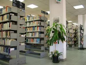 biblioteca-interno
